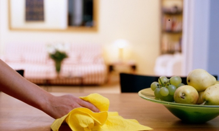 Shay's Cleaning & Organizing Service - Raleigh / Durham: Two Hours of Cleaning Services from Shay's Cleaning & Organizing Service (55% Off)