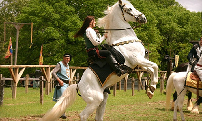 Four Winds Renaissance Faire - Troup: Four Winds Renaissance Faire for Two or Four Adults or Two Adults and Two Kids in Troup (Up to Half Off)