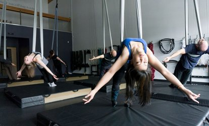 image for 3 Aerial Fitness, Aerial Yoga, or Flexibility Classes at The <strong>Circus</strong> Project (52% Off)