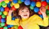 Lil' Monkeys Indoor Playgrounds Inc. - Burlington Industrial Area: Family Indoor Play or Birthday Party for 13 or 16 Kids at Lil' Monkeys Indoor Playgrounds Inc. (Up to 72% Off)