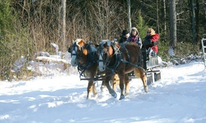 Cornerstone Ranch: Group Horse-Drawn Sleigh Ride for Two or Four, or Private Ride for Two from Cornerstone Ranch (Up to 48% Off)
