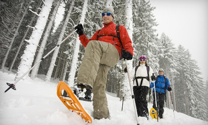 Whistler Snowshoeing Tours - Whistler: Three-Hour Snowshoeing Tour for One or Two from Whistler Snowshoeing Tours (Up to 52% Off)
