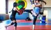 Up to 74% Off MMA and Fitness Membership