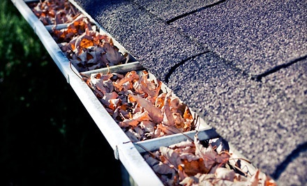 $75 for 150 Feet of Gutter Cleaning from Gutter Brothers ($150 Value)