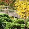 Fort Worth Botanic Garden – Up to 60% Off Visit