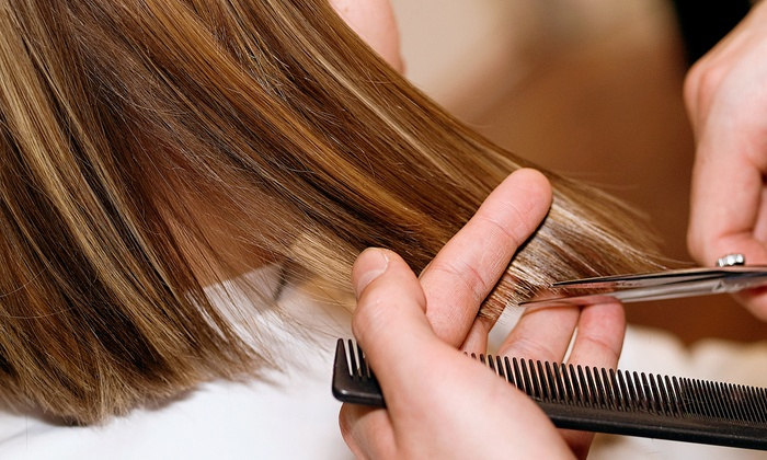 Styles of Elegance Salon - Jenkintown: Cut, Conditioning, and Blow-Dry with Optional Partial Highlights at Styles of Elegance Salon (Up to 56% Off)