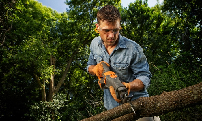 Spaulding Tree Service - Charlotte: $110 for $200 Worth of Tree-Trimming Services — Spaulding Tree Services