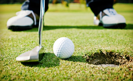 One or Three 60-Minute Private Golf Lessons at Ed Harris School of Golf (Up to 56% Off)