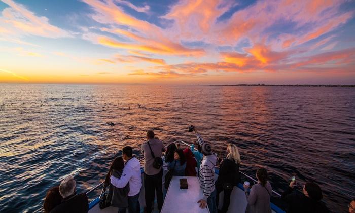 Cruise Newport Beach - Newport Beach, CA | Groupon