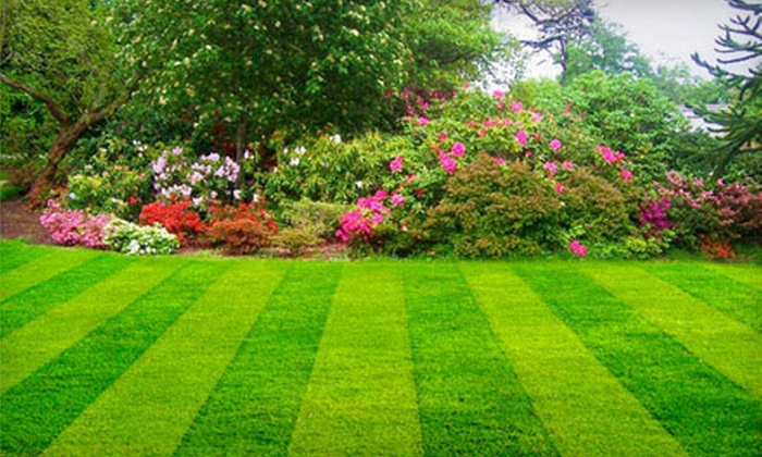 Castle Rock Landscape Design and Maintenance - Springfield MO: $99 for a Fall Lawn-Cleanup Package from Castle Rock Landscape Design and Maintenance ($250 Value)