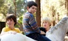 Springs Equestrians - Springs Equestrians: One Week of Summer Horse-Riding Camp for One or Two Kids at Springs Equestrians (Up to 55% Off)
