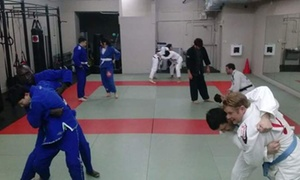 Budan Jiu Jitsu: Up to 82% Off Jiu Jitsu and Self Defense at Budan Jiu Jitsu