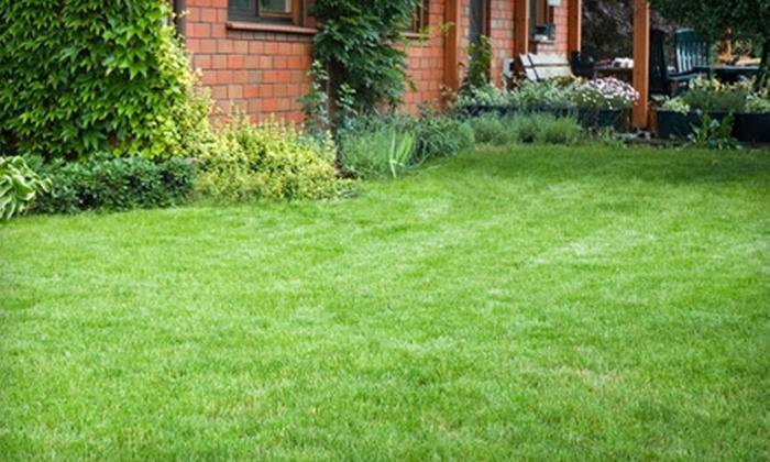 Outdoor Oasis - Knoxville: Lawn-Aeration Service with Optional Fertilization from Outdoor Oasis (Up to 72% Off)