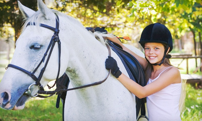 Silverfox Farm - Ashburn: Two or Four Horseback-Riding Lessons at Silverfox Farm (Up to 64% Off)