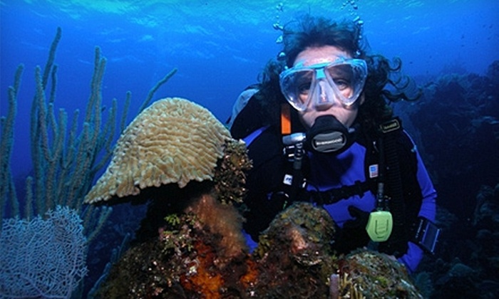 Castaway Scuba Adventures - Oviedo: $25 for $50 Worth of Tank Refills and Rentals, or Equipment at Castaway Scuba Adventures. Two Options Available.