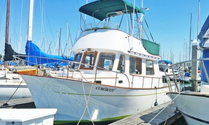 Cowbouy Sportfishing: Cruise, Sport Fishing, or Whale Watching for Two or Private Trip for Six at Cowbouy Sportfishing (Up to 49% Off)