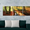 """60""""x20"""" Mounted Triptych Photography Canvas Prints"""