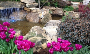 Indiana Flower & Patio Show: Single-Day Admission for Two or Four at Indiana Flower & Patio Show (Up to 29% Off)
