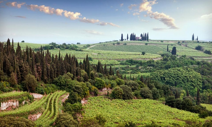 7-Day Tuscan Culinary Vacation with Airfare and Rental Car - Figline Valdarno: 7-Day Tuscany Culinary Vacation at Villa Casagrande with Airfare and Rental Car