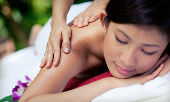 Serenity by Amy - Steger: Two or Four 60-Minute Massages at Serenity by Amy (Up to 54% Off)