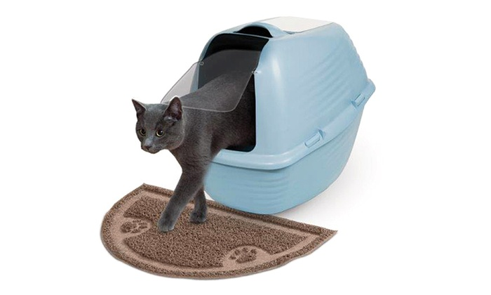 how to clean cat puke out of litter mat