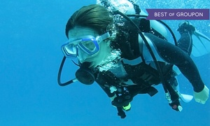 Scuba Shoppe: One-Week Full-Certification Diving Course or Tropical Referral Class at Scuba Shoppe (Up to 54% Off)
