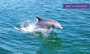 $35 For Dolphin Or Sunset Cruise For Two From Premier Dolphin Cruise ($60 Value)