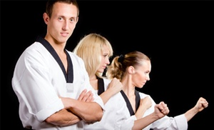 Aiki Karate Do: $100 for $199 Worth of Martial Arts at Aikikaratedo Inc
