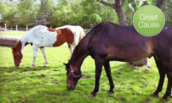 West Place Animal Sanctuary - Providence: $10 Donation for Water Source for Animal Sanctuary