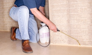 BugEX: $74 for an Interior and Exterior Pest-Control Treatment from BugEX ($230 Value)