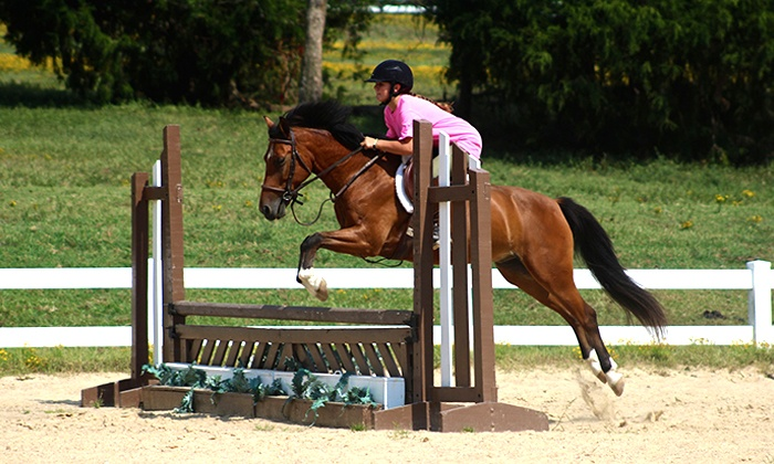 Oak View Stables - 1: One or Two Private Horseback Riding Lessons with Helmet at Oak View Stables (Up to 59% Off)