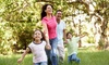 MosquitoNix: $59 for One Mosquito and Gnat-Fogging Lawn Treatment for Up to 3/4 Acre from MosquitoNix ($149 Value)