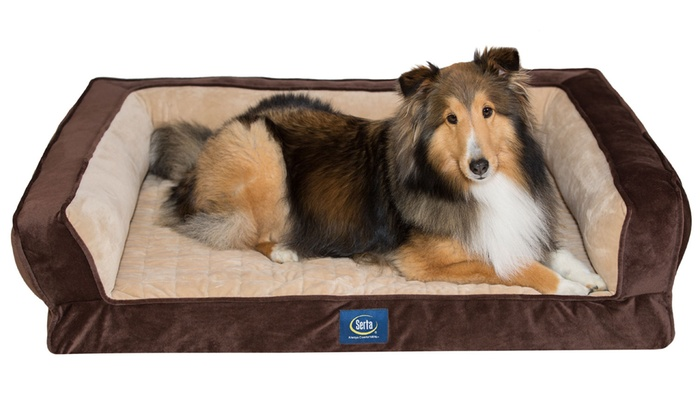 Phenomenal Serta Ortho Foam Couch Style Bed For Pets Groupon Uwap Interior Chair Design Uwaporg