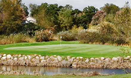 18-Hole Round of Golf for Two or Four and Cart Rental at The Ponds Golf Course (56% Off)