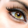 Up to 56% Off Lash Lifting and Tinting