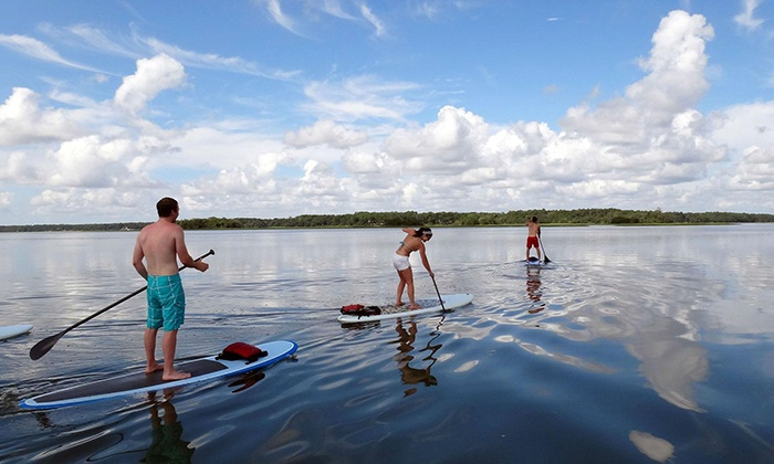 Charleston Paddler - Mount Pleasant: Two-Hour Guided Paddleboard Tour for Two, Four, or Six from Charleston Paddler (Up to 56% Off)