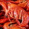 $10 for Seafood at Capitol City Crawfish