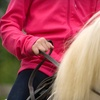 Up to 76% Off Private Riding Lessons in Dobson