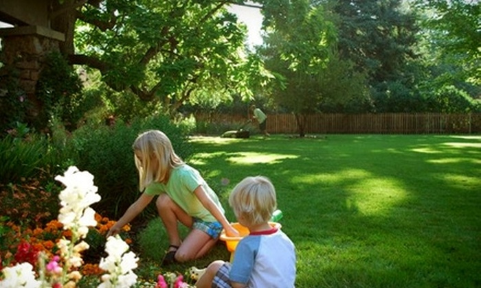 Clean Air Lawn Care - Oberlin Village: $78 for Four Organic Lawn Treatments from Clean Air Lawn Care (Up to $212 Value)