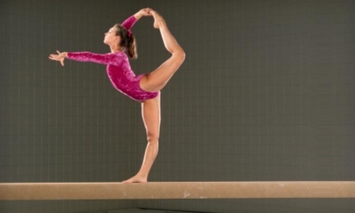 Alpha Omega Gymnastics - Missouri City: $30 for One Month of Gymnastics Classes at Alpha Omega Gymnastics in Missouri City