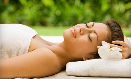 Basic Spa-Day Package (up to a $79 total value) - Masters of Cosmetology College in Fort Wayne