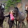 Up to 75% Off Horseback Riding in Broadalbin