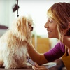 Up to 62% Off Dog Grooming at Spot's Spot and Spa