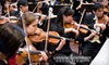 Lansing Symphony - Multiple Locations: $19 for One Ticket to the Lansing Symphony Orchestra on January 8 ($38 Value)