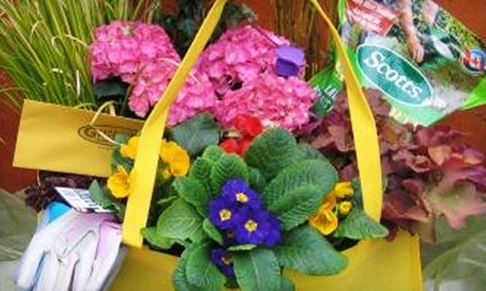 Gardenland Garden Centres - Kitchener - Waterloo: $20 for $40 Worth of Annuals, Perennials, Nursery Stock, and Gardening Supplies at Gardenland Garden Centres