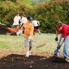 (G-Team) Cooks Community Garden - Mountain Island: If 30 People Donate $10, Then Cooks Community Garden Can Send 30 People to One Class About Growing & Preparing Food