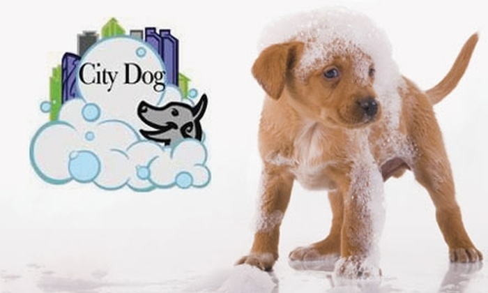 City Dog - San Diego: $29 for Six Self-Service Dog Washes at City Dog ($72 Value)