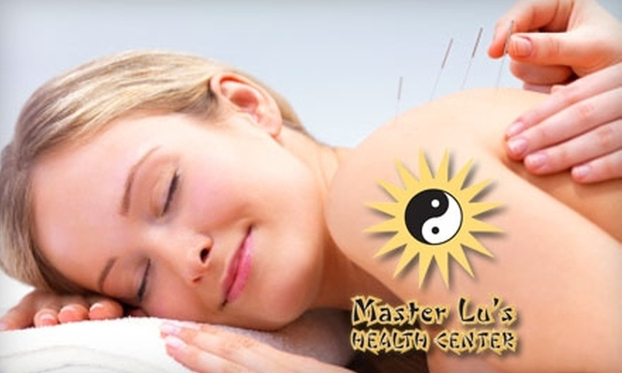 Master Lu's Health Center - Multiple Locations: $25 for a 90-Minute Acupuncture Treatment at Master Lu's Health Center