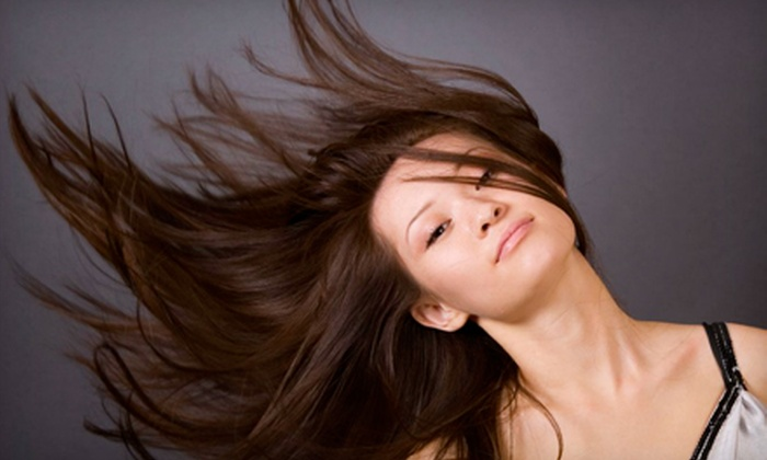 Salon Stefan - Holly Hill: Haircut, Color, and Keratin Treatments at Salon Stefan (Up to 56% Off). Four Options Available.