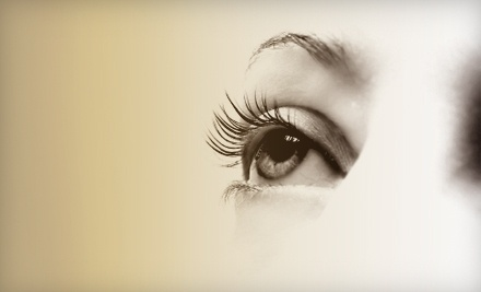 $65 Groupon to The Eyelash Connection - The Eyelash Connection in Reno